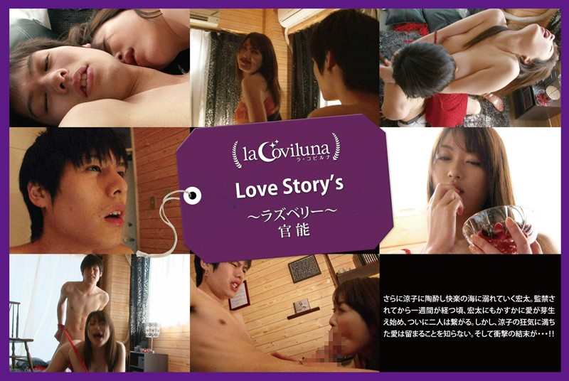 Love Story's 〜ラズベリー〜官能的女性向け動画