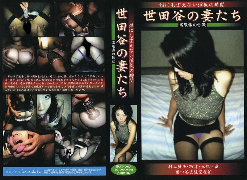 世田谷の妻たち 高級妻の性欲 村上麗子