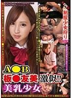 「制服少女狩り 乙宮ありさ」のパッケージ画像