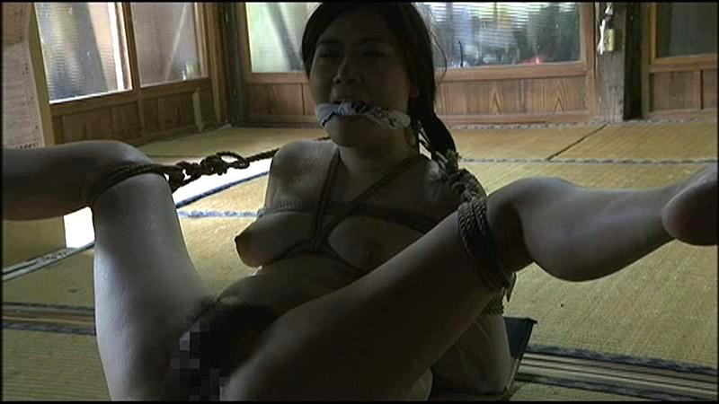 ヘンリー塚本 やる ナマナマしい 男女生殖器合体結合映像のサンプル画像3