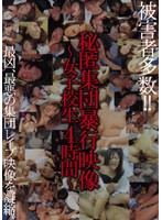 秘匿 集団暴行映像 〜女子校生 4時間〜 ダウンロード