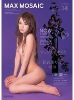 (iptd254)[IPTD-254] マックス モザイク VOL.14 長谷川リオ ダウンロード