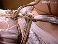 ランジェリーモデル 蛇縛の傲慢調教 2