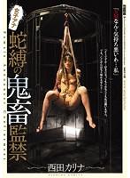 「女子アナ蛇縛の鬼畜監禁 西田カリナ」のパッケージ画像