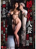 「縛られた人妻 ~服従の露出緊縛~ 篠田あゆみ」のパッケージ画像