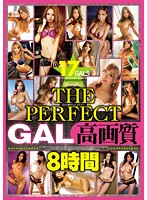 THE PERFECT GAL 高画質8時間 ダウンロード