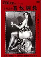 (kitd022)[KITD-022] 追真Mビデオ 女王様と奴隷たち 3女王の畜奴調教 ダウンロード
