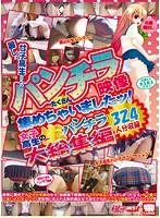 麗しの女子校生たちのパンチラ映像たくさん集めちゃいましたッ!女子校生の生パンチラ324人分収録 大総集編 ダウンロード