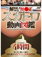 解禁!無●正 スカトロ動画図鑑