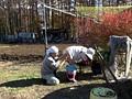 [KTKX-115] 農家の娘 冬は大根とお父さんと子作りの季節 酒井紗也