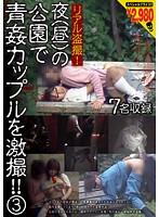 リアル盗撮! 夜(昼)の公園で青姦カップルを激撮!! 3 ダウンロード
