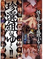 素人生ハメ集団 珍選組がゆく!!