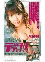 デジタルモザイク Vol.054 麻生まりも ダウンロード
