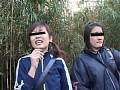 チンポを見たがる女たち15 素人娘にドッキリ露出編