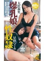 「爆乳娘と性奴隷」のパッケージ画像