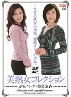 美熟女コレクション 赤坂エレナ 姫野京香 ダウンロード