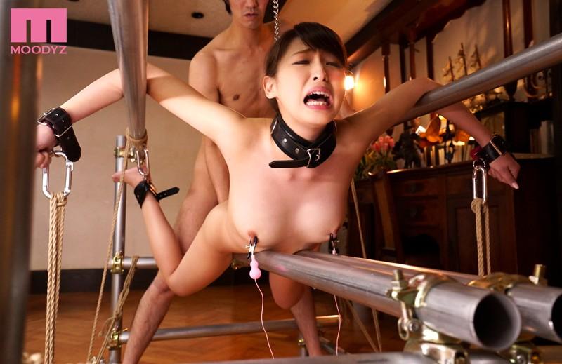 BDSM人体固定