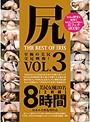 尻 THE BEST OF IRIS Vol.3