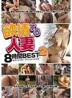 欲情する人妻8時間BEST Vol.2