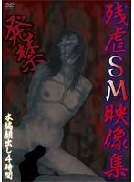 (naql00002)[NAQL-002] 発禁 残虐SM映像集 ダウンロード