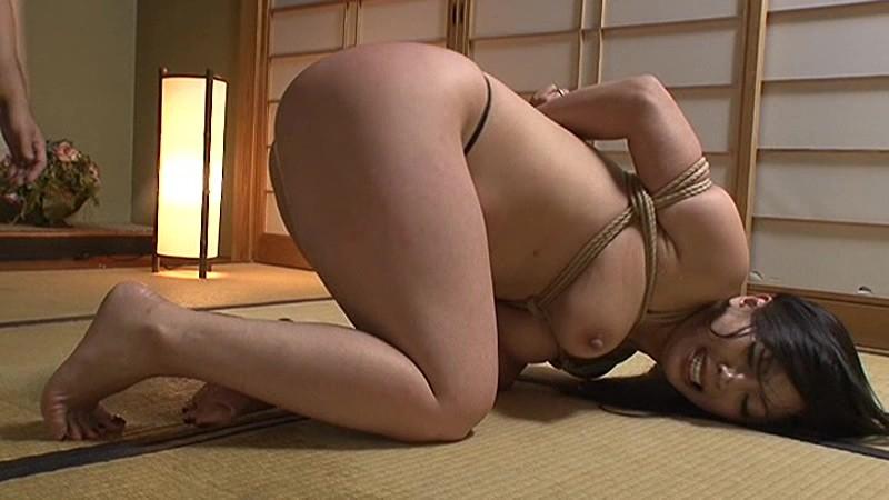 苦痛・熱蝋・電マ・鞭 3 の画像7