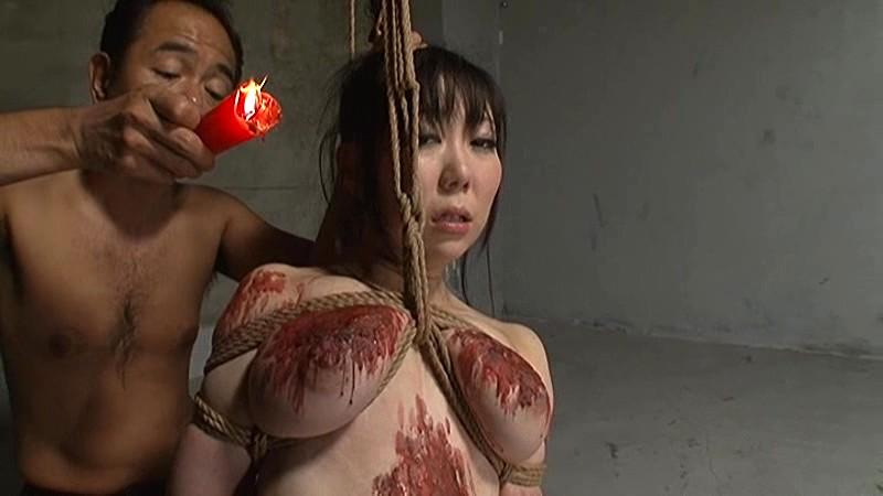 苦痛・熱蝋・電マ・鞭 3 の画像16