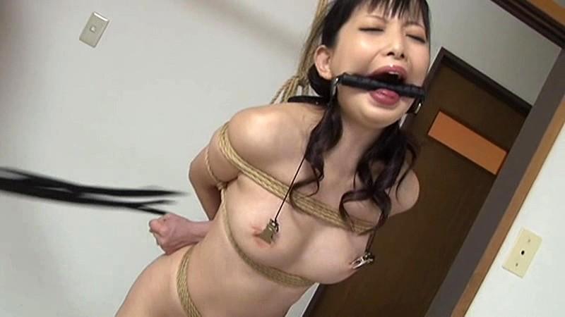 苦痛・熱蝋・電マ・鞭 3 の画像12