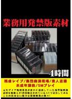 (nmfl001)[NMFL-001] 業務用発禁版素材 ダウンロード