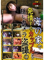 (noma00009)[NOMA-009] 海の家で発情するカップルたち隠しカメラ盗撮1 ダウンロード