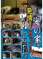 (noma00010)[NOMA-010] 海の家で発情するカップルたち隠しカメラ盗撮2 ダウンロード