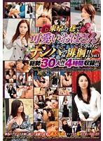 (nsa00033)[NSA-033] 東京の巷で可愛いおばさんを求めてナンパで徘徊!!Vol.1 ダウンロード