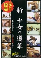 (nsk02)[NSK-002] 新・少女の道草 Vol.2 ダウンロード