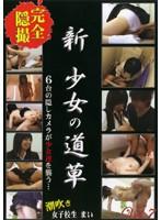 (nsk07)[NSK-007] 新・少女の道草 Vol.7 ダウンロード