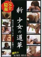 (nsk08)[NSK-008] 新・少女の道草 Vol.8 ダウンロード