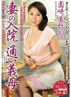 「妻の入院 通い義母 園崎美弥」のパッケージ画像
