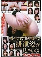 様々な女性の様々な排泄姿が見たい 2 ダウンロード