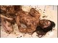 (odv00378)[ODV-378] 人間糞おはぎ 元カレに仕込まれた全身糞まみれの肛門性交 舞咲ユイ ダウンロード 20