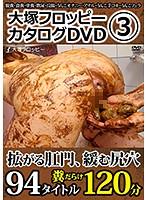 大塚フロッピーカタログDVD 3 ダウンロード