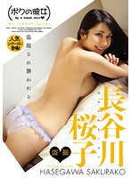 長谷川桜子
