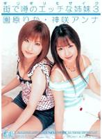 「ギリギリモザイク 街で噂のエッチな姉妹3 園原りか・神咲アンナ」のパッケージ画像