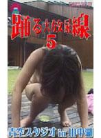 踊る大放尿線5 青空スタジオin山中湖 ダウンロード