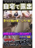 (parat00782)[PARAT-782] 自宅で露出!? 見せたがる女たち(6) 〜玄関でおっぱい露出!新聞配達員が驚愕! ダウンロード