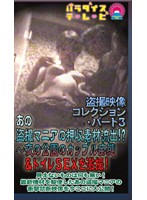 (parat00797)[PARAT-797] あの盗●マニアの押収素材流出!?(3) 〜夜の公園のカップル痴態&トイレSEXを激撮! ダウンロード