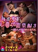 残虐鬼畜レ○プ総集編(3)~15人の犯された女たち