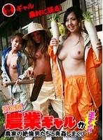 渋谷系'農業ギャル'が逆ナンパ!農家の絶倫男たちと青姦しまくり ダウンロード