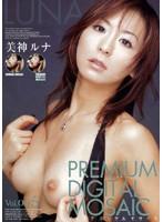 プレミアデジタルモザイク Vol.005 美神ルナ