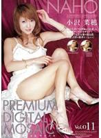 プレミアデジタルモザイク Vol.011 小沢菜穂 ダウンロード