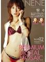 プレミアデジタルモザイク Vol.012 寧々