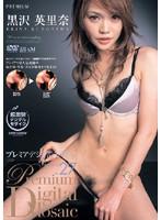 プレミアデジタルモザイク Vol.027 黒沢英里奈 ダウンロード