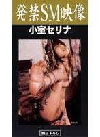 (pje001)[PJE-001] 発禁SM映像 小室セリナ ダウンロード